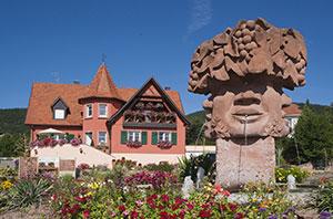 L'histoire et le domaine de votre viticulteur alsacien