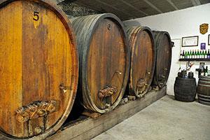 La culture des grands vins et crémants d'Alsace